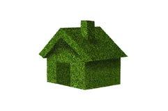 Eco trawy dom Zdjęcie Stock