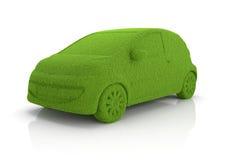 Eco trawy samochód Obraz Stock