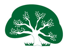 Eco tree. Green and white vector representing an eco oak tree royalty free illustration