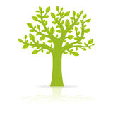 Eco Tree Royalty Free Stock Photography