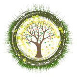Eco Tree Stock Photos