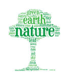Eco tree concept word clouds Royalty Free Stock Images