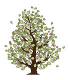 Eco Tree with green leaves, Isolated On White Background Royalty Free Stock Photo
