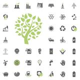 Eco tree icon. Eco and Alternative Energy vector icon set. Energy source electricity power resource set vector. Eco tree icon. Eco and Alternative Energy vector Royalty Free Stock Photography