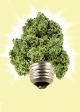 Eco tree lightbulb Stock Photography