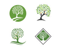 Eco Tree Logo Template Stock Images