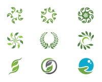 Eco Tree Logo Template Royalty Free Stock Photo