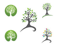 Eco Tree Logo Template Stock Photos