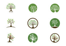 Eco Tree Logo Template Stock Photography