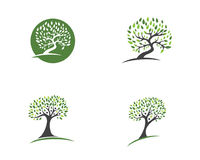 Eco Tree Logo Template Stock Image