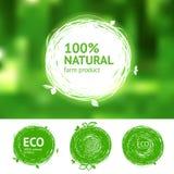 Eco uppsättning för naturprodukter Fotografering för Bildbyråer