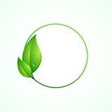 Eco vänligt begrepp, gräsplanrundaram med sidor Arkivfoton