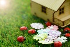 Eco vänligt hus Arkivfoton