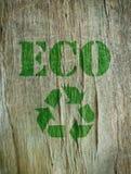 Eco vänskapsmatch arkivbild