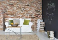 Eco vardagsrum med soffan fotografering för bildbyråer