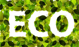 Eco vector word made from leafs Royalty Free Stock Photography