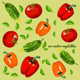 Eco vegetables, vector mix on a green background Royalty Free Stock Images