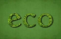Eco (verde) Fotografia Stock Libera da Diritti
