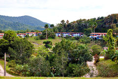 Eco-villaggio di Las Terrazas, Cuba Fotografia Stock Libera da Diritti