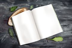 Journal Mock up Template Royalty Free Stock Photography