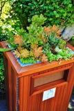 Eco Vriendschappelijk, de Herfst, bloem in Butchart-Tuin, Victoria, het Eiland van Vancouver, Brits Colombia, Canada Stock Foto's