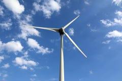 Eco władza, siła wiatru roślina obraz royalty free