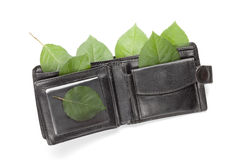 Eco wallet on white Royalty Free Stock Photo