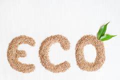 Eco wheat cereals on a white background. With green leaves Stock Images
