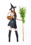 Eco witch Royalty Free Stock Photo