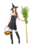 Eco witch Stock Images