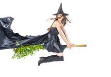 Eco witch Stock Photos