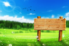 Eco Wooden banner (Beautiful landscape) Royalty Free Stock Photography