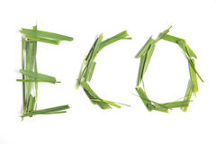 Eco word. Stock Photo