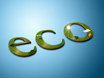 Eco word Royalty Free Stock Image