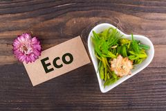 Eco word on card Stock Images