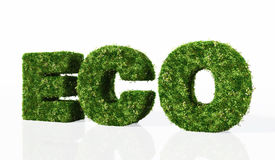 Eco word composed by grass Stock Photo