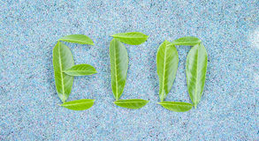 Eco word composed of green leaves Stock Photos