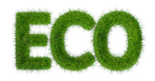 Eco word Royalty Free Stock Photo