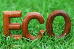 ECO, word on grass background Royalty Free Stock Photography
