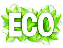 Eco Word and Leaves Stock Photos