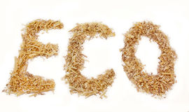 Eco word of sawdust isolated Stock Photo