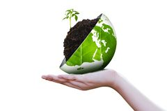 Eco world on hand. Isolated on white background, Ecology concept Royalty Free Stock Photos