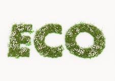 Eco-Wort geschrieben durch Blumen und Gras Stockfoto