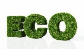 Eco-Wort verfasst durch Gras lizenzfreie abbildung