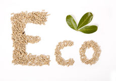 Eco written with wood pellets, with green leaf on white background Royalty Free Stock Images