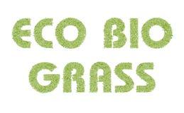 Eco życiorys trawa Ilustracja Wektor