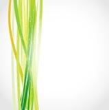 Eco zieleni abstrakta tło ilustracja wektor