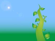 Ecobakgrund för blå gräsplan Royaltyfria Foton