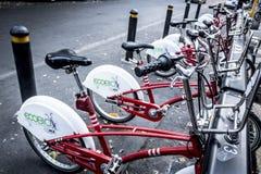 Ecobici市自行车在墨西哥城 免版税库存图片