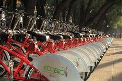 EcoBici, Meksyk - Zdjęcia Stock